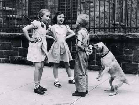 Photographic Print: Dog Eating Ice Cream Cone Hidden behind Boy's Back by William Milnarik : 24x18in