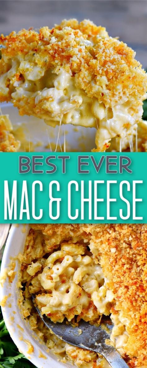The BEST Homemade Mac and Cheese of your LIFE. Outrageously cheesy, ultra creamy, and topped with a crunchy Panko-Parmesan topping, this mac and cheese recipe is most definitely a keeper. I used three Baked Mac And Cheese Recipe, Homemade Cheese Sauce, Best Macaroni And Cheese, Bacon Mac And Cheese, Creamy Mac And Cheese, Baked Cheese, Low Calorie Mac And Cheese Recipe, Recipe For Homemade Macaroni And Cheese, Home Made Mac And Cheese Recipe