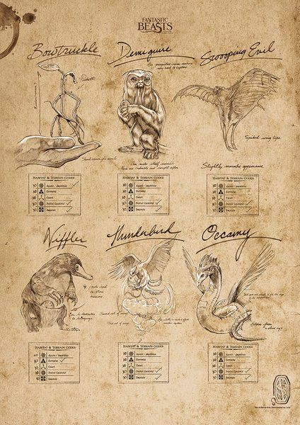 Fantastic Beasts And Where To Find Them Beasts Sketchbook Graphic Art Print Harry Potter Creatures Harry Potter Printables Sketch Book