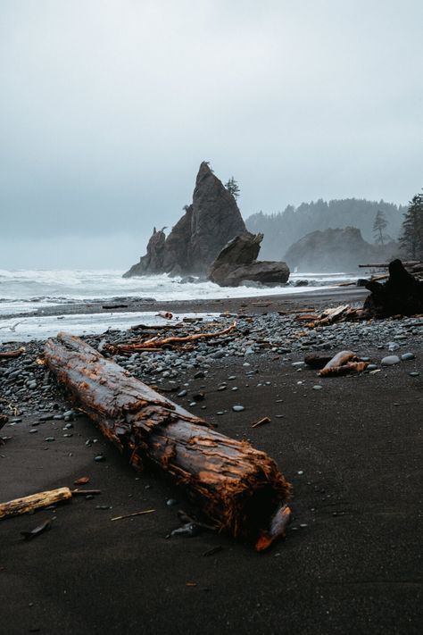 Best Things To Do In Olympic National Park (Itinerary Examples, Best Hikes, And Maps!) - The Mandagies The Places Youll Go, Places To See, Rialto Beach, Just Dream, National Parks, Olympia National Park, Olympic National Park Camping, Olympic National Forest, Olympic Peninsula