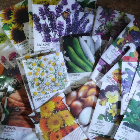 @WhitetailHollowFarms posted to Instagram: Let the planting begin! Seeds, lots of seeds, & more on the way! Grabbed up two really good books on companion planting this year so the garden will be full of veggies, herbs, and lots of flowers for our pollinator friends to do their magic. 🐝🦋🌻 (visit our FB page for the full list of seeds & links - @WhitetailHollowFarms) #whitetailhollowfarms #seedneeds #flowerseeds #gardenlife #blooms #mygarden #seeding #seeds #i