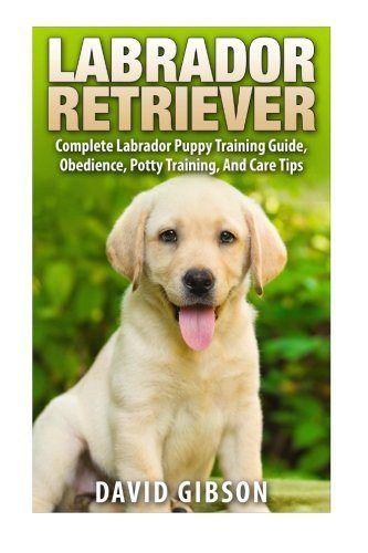Puppy Training Labrador Retriever Labrador Retriever Training