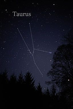 Taureau (constellation) — Wikipédia