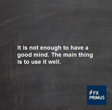 It Is Not Enough To Have A Good Mind The Main Thing Is To Use It