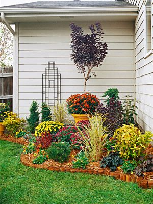 Make a statement in your landscape by filling in a corner with color, foliage, & texture.