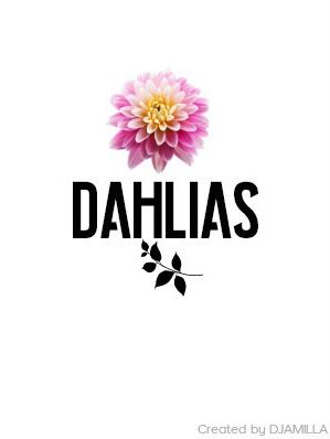 Dahlias Logo I Djamilla In 2020 Dahlia Logos Poster
