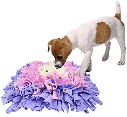 Kyc Dog Snuffle Mat Pet Nosework Slow Feeding Training Play Puppy