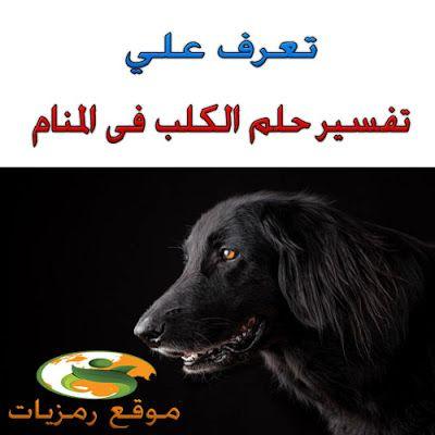 رمزيات تفسير حلم رؤية الكلاب فى المنام ما هو تفسير حلم ال Poster Movie Posters Animals
