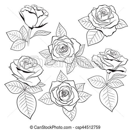 Vector Set Of Detailed Isolated Outline Rose Bud Sketches With Leaves Csp44512759 Flower Drawing Rose Outline Flower Drawing Tutorials