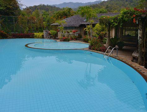 The Paleo Pool
