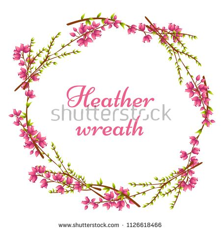 Vector Wreath Of Calluna Vulgaris Heather Or Ling The Native Flower Of Norway Round Frame Isolated On Whi Heather Flower Flower Outline Flower Line Drawings