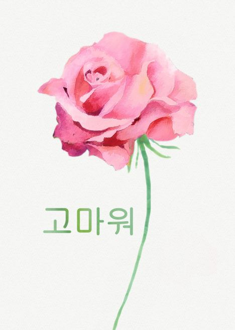 Thank You In Korean Watercolor Pink Rose Card Ad Affiliate Watercolor Korean Pi Personalized Greeting Cards Greeting Card Artist Thank You In Korean