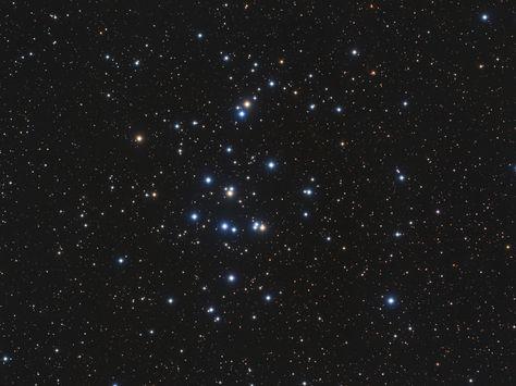 M44: The Beehive Cluster (Image Credit & Copyright: Bob Franke)