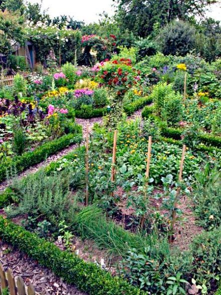 What's the Difference Between a Kitchen Garden and a Regular Vegetable Garden?