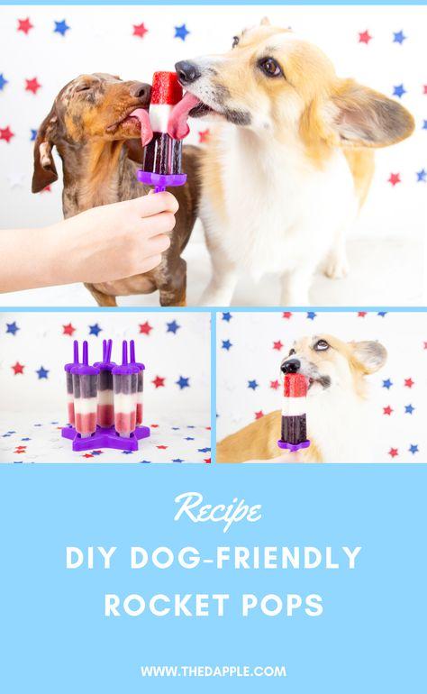 DIY Rocket Pop Recipe for Dogs
