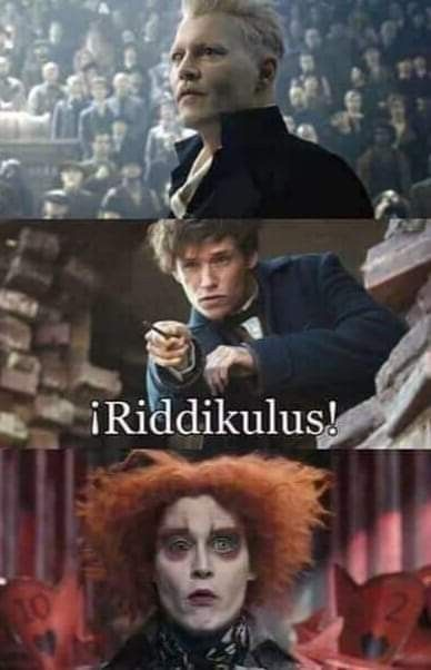 I Laughed Harder Than I Should Ve Schlut Harder Laughed Schlut Shouldve Harry Potter Lustig Harry Potter Tumblr Harry Potter Fanfiction
