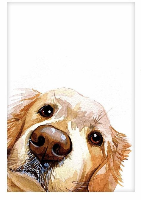 Art Drawings Sketches, Animal Drawings, Watercolor Illustration, Watercolor Paintings, Watercolor Portraits, Watercolours, Watercolor Animals, Animal Paintings, Dog Art