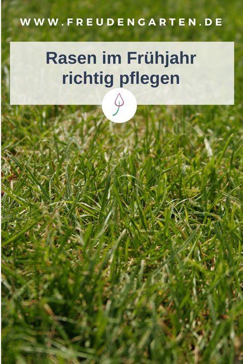 Rasen Im Fruhjahr Pflegen Vertikutieren Dungen Rasen Dungen Rasen Vertikutieren