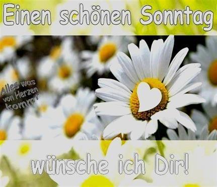 Sonntag Sprüche Whatsapp Sonntag Sprüche Whatsapp -pics Sonntag Sprüche Whatsapp Sonntag - bilder