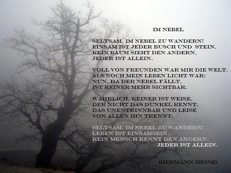 Hermann Hesse Im Nebel November 1905 Weise Worte Weisheiten Spruche