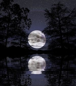 Moonlight shining on the water. by guadalupe