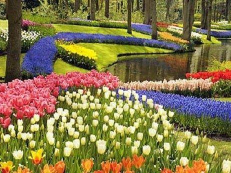 Taman Bunga Bumi Pandeglang Indah