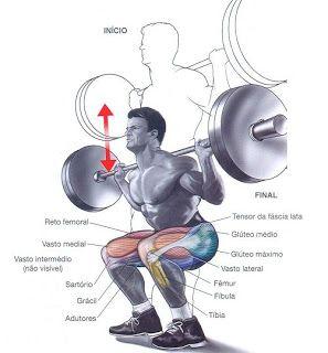 Hipertrofia Muscular Com Planos De Exercicios Treino Corposflex