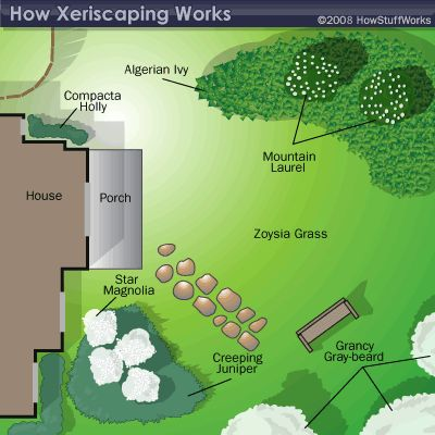 How Xeriscaping Works