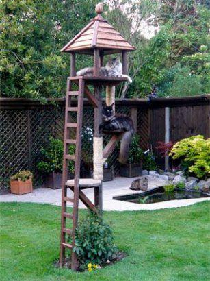 Jardin : 20 cabanes extérieures pour nos amis les chats