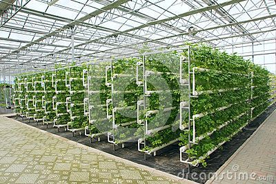 Hydroponic Greenhouse Design Plans Rubbermaid 7 X 7 Shed Free