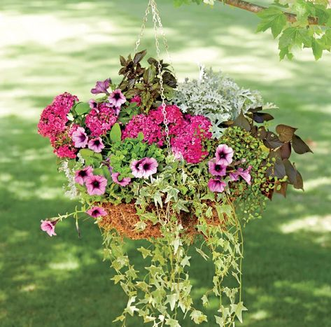Große Blumenkübel bepflanzen – 60 Ideen, Bilder und Vorschläge