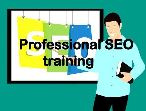 Professional SEO training