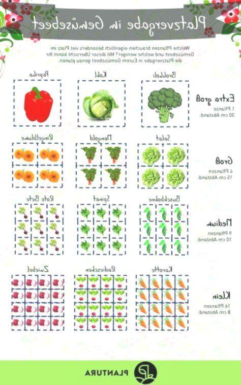 Platz Im Gemusebeet Welche Pflanzen Brauchen Eigentlich Mehr Platz Im Be Brauchen Vegetable Garden Design Garden Design Plans Backyard Vegetable Gardens