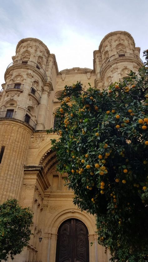 Alcazaba of Málaga vs. Castillo Gibralfaro - what's the best thing to do in Malaga Spain? Top attractions & best places to go in Malaga! Places To Travel, Places To See, Spain Culture, Spain And Portugal, Travel Aesthetic, Aesthetic Outfit, Spain Travel, Beach Trip, Dream Vacations