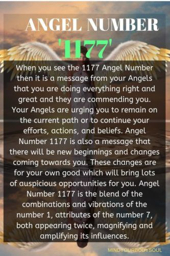 1177 Angel Number What Does It Mean In Love Angel Number