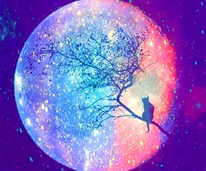 Moon Cat And Tree Bild Unicorn Pictures Galaxy Painting Galaxy Cat