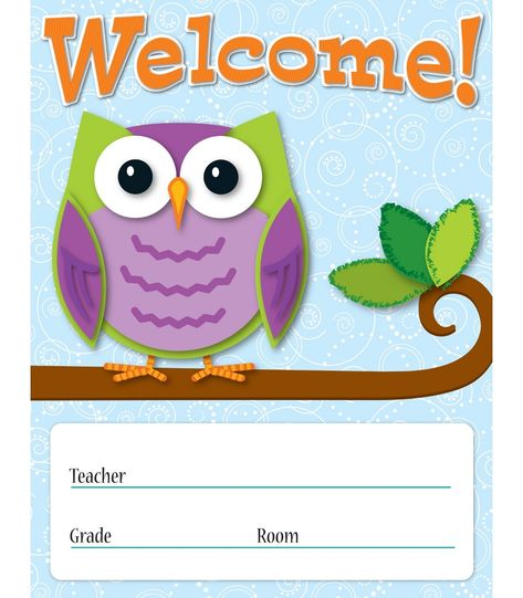 Colorful Owl Classroom Decorations ~ Colorful owls classroom décor on pinterest owl