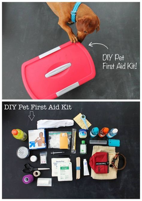 And this pet emergency kit, because they're basically your children, too. DIY Pet First Aid Kit: 19 DIY first aid kits that literally prepare you for anything Diy Pour Chien, Diy First Aid Kit, Hiking First Aid Kit, Diy Pet, My Champion, Animal Projects, Diy Stuffed Animals, Pet Health, Health Tips