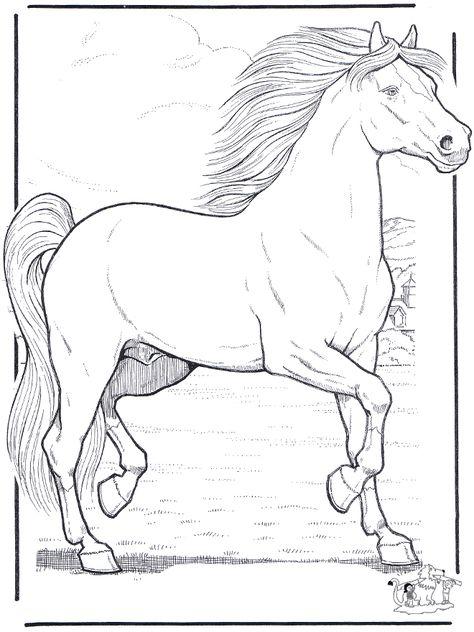 Lineart Desenhos Para Colorir Cavalos Desenhos De Animais A