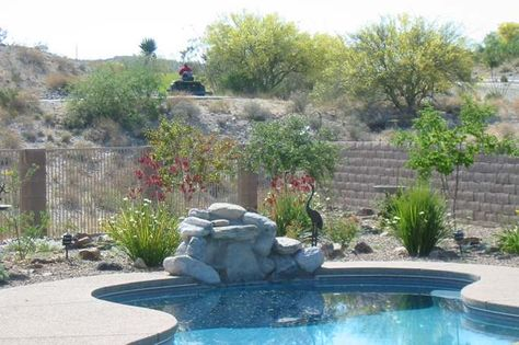 Desert Landscaping Often Incorporates Decorative Rocks, Gravel, Small  Boulders, And Fieldstones As Features And Groundcovers. When Interplanted  Witu2026