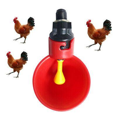 Farm Supplies Chicken Coop Waterer Fowl Feeder Automatic Water Drinker Bowls Chickenhouse Chickencoopplans Ch Chickens Backyard Chicken Coop Chicken Waterer