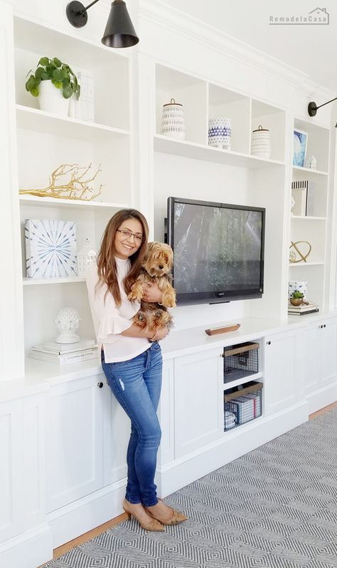 Family Room Built-in - Fast Cabinet Doors