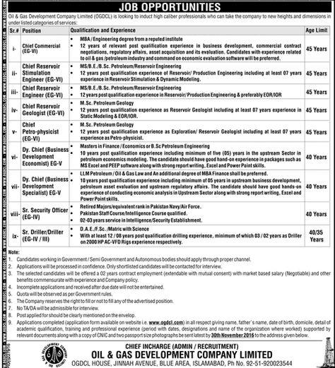 Punjab Model Bazaars Management Company PMBMC Jobs Before 2003 - chief executive officer job description