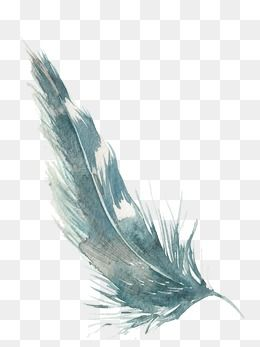 Watercolor Feather Png Images Vector And Psd Files Free Download On Pngtree Watercolor Feather Feather Art Watercolor