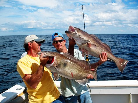 Fishing Charters Port Canaveral Sea Leveler Sport Fishing