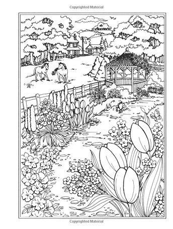 Amazon.com: Creative Haven Spring Scenes Coloring Book (Creative ...