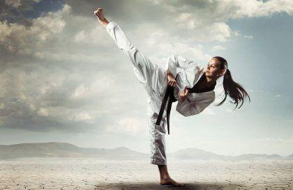 Park Art My WordPress Blog_Warrior Martial Arts Flower Mound