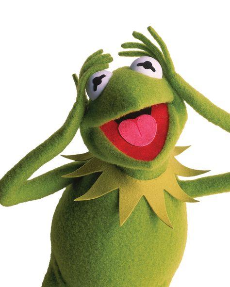 kermit the frog  kermit  kermit the frog kermit kermit
