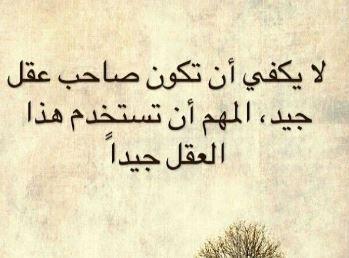 حكم عن العقل اقوال وحكم عن العقل Arabic Calligraphy Calligraphy Advice
