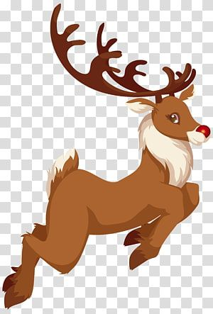 Rudolph Santa Claus Reindeer Christmas S Rudolph Transparent Background Png Clipart Reindeer Drawing Cartoon Reindeer Christmas Card Illustration